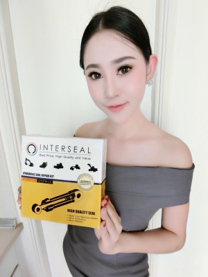 INTERSEAL 01