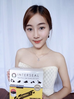 INTERSEAL 04